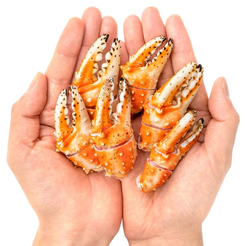 【送料無料】訳あり タラバガニ爪 たらばがに爪 500g かに爪21-25サイズ  タラバガニ たらばがに カニ爪 蟹 タラバ