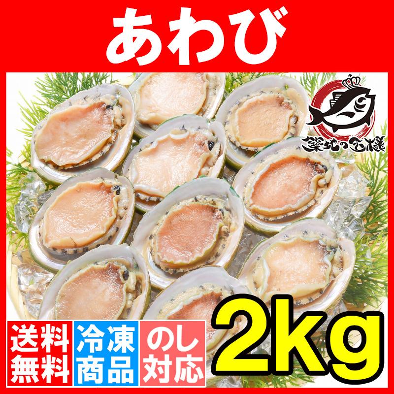 送料無料 あわび(Lサイズ 2kg合計24個・1箱12個入り 殻つきお刺身用アワビ)