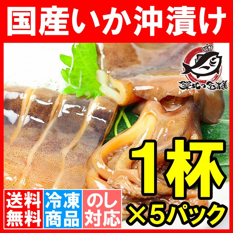 送料無料 特大 国産真いかの沖漬け 1杯×5パック (いか イカ 烏賊)