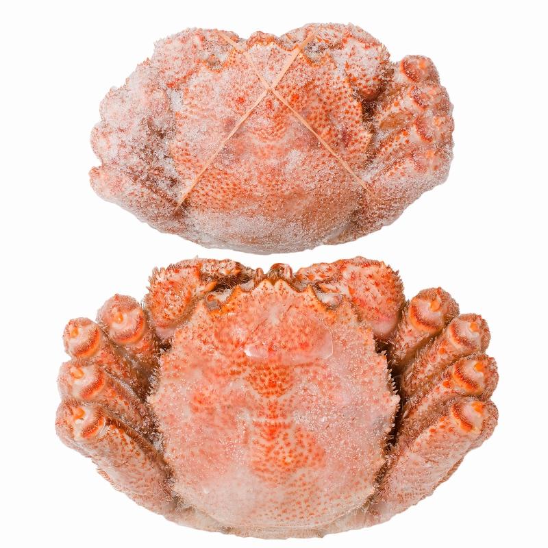 送料無料 毛ガニ 毛がに 毛蟹 浜茹で 毛ガニ姿 平均400g前後×2尾