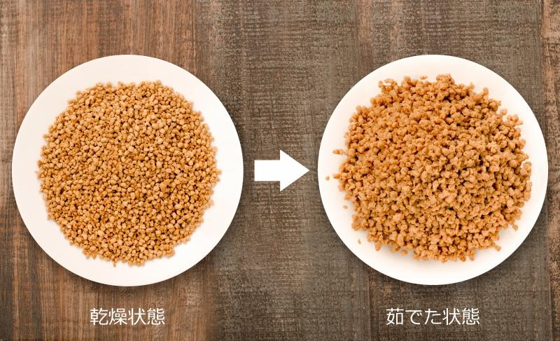 メール便送料無料 大豆ミート ソイミート ミンチ ひき肉タイプ 160g ×2パック