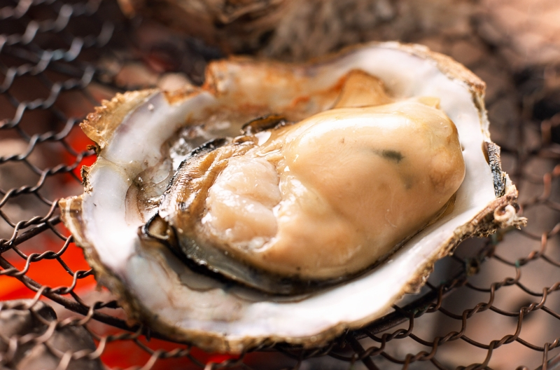 送料無料 生牡蠣 殻付き 生食用カキ(36個入り・冷凍殻付き牡蠣・生食用)