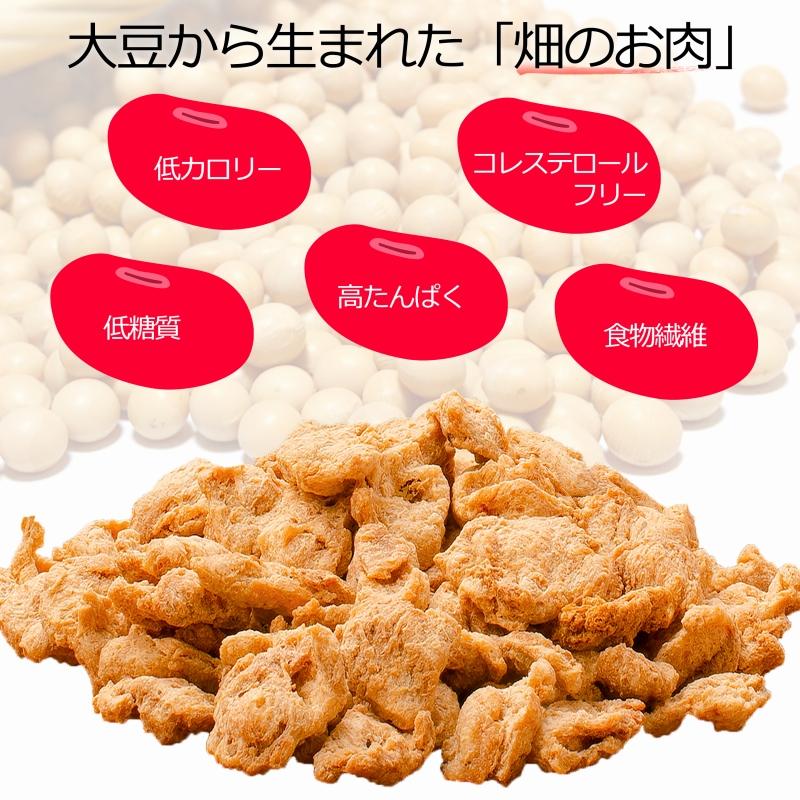 メール便送料無料 大豆ミート ソイミート チャンク ぶつ切りタイプ 100g ×1パック