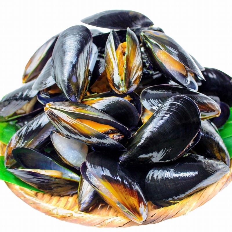 送料無料 ムール貝 1kg(ボイル・殻つきムール貝・500g×2パック)