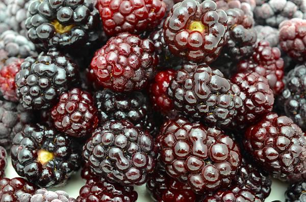 ブラックベリー 冷凍ブラックベリー 500g×1パック 冷凍フルーツ ヨナナス