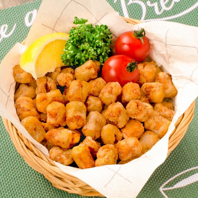 大豆ミート ソイミート 大豆のもちもち揚げ 1kg