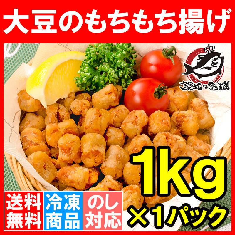 送料無料 大豆ミート ソイミート 大豆のもちもち揚げ 1kg