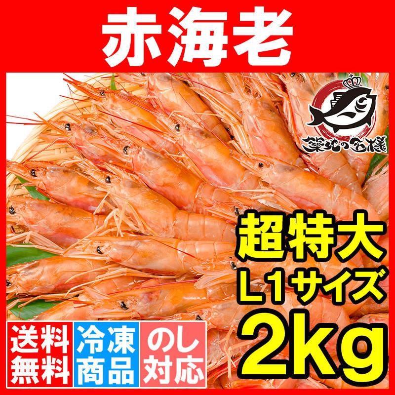 送料無料 赤海老 赤えび 2kg 超特大 L1 20〜40尾 業務用 1箱 赤エビ あかえび アカエビ 寿司 刺身用