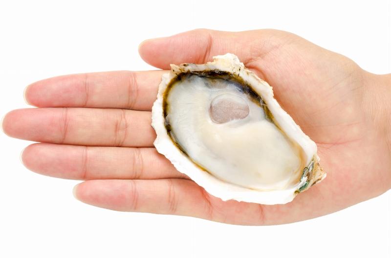 生牡蠣 殻付き 生食用カキ 生牡蠣 6個入り 冷凍殻付き牡蠣