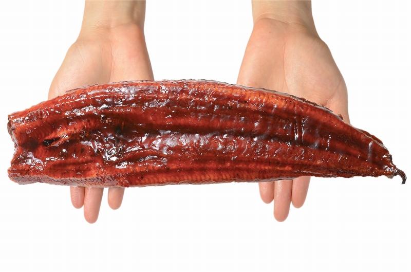 国産うなぎ蒲焼き 大サイズ 平均165g前後×2尾