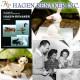 ヘイゲン リネカー 【 HAGEN RENAKER 】 社製陶器 バセット