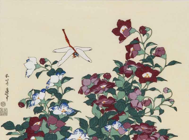 花鳥図【桔梗にとんぼ】/葛飾北斎