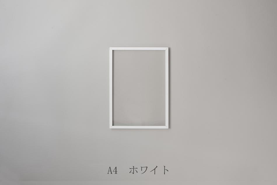 フレーム(ムーベ/MOEBE)