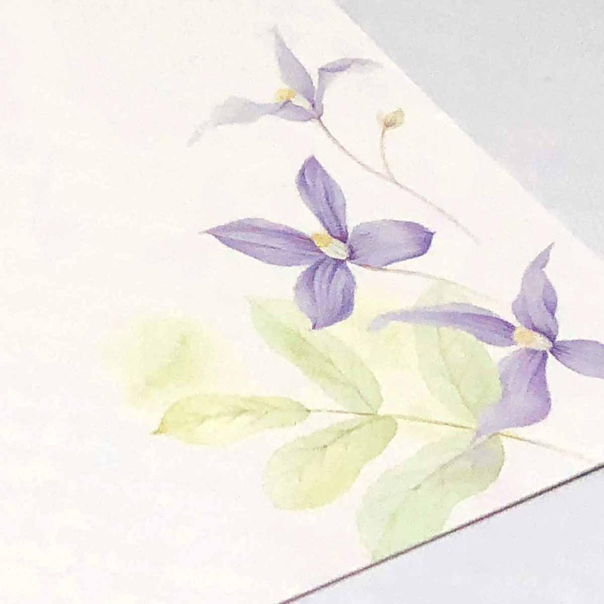 喪中ハガキ 野の紫色|mpc-038