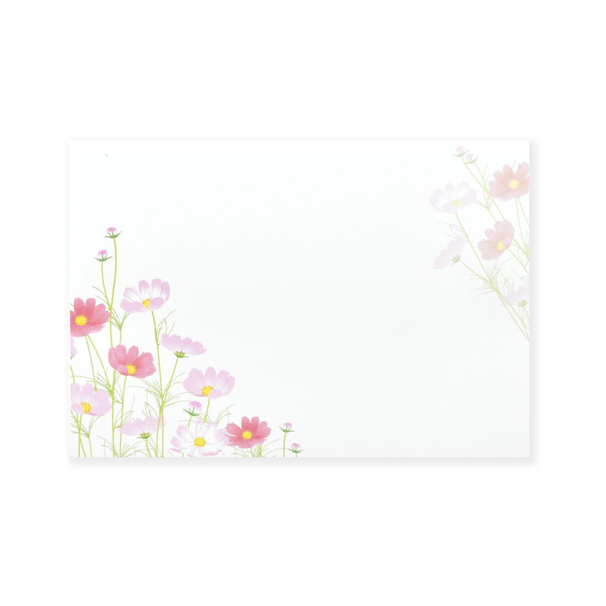 ミニレターセット 草原のコスモス|mls-130