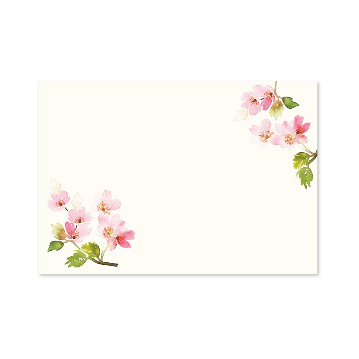 ミニレターセット 満開の桜 mls-127