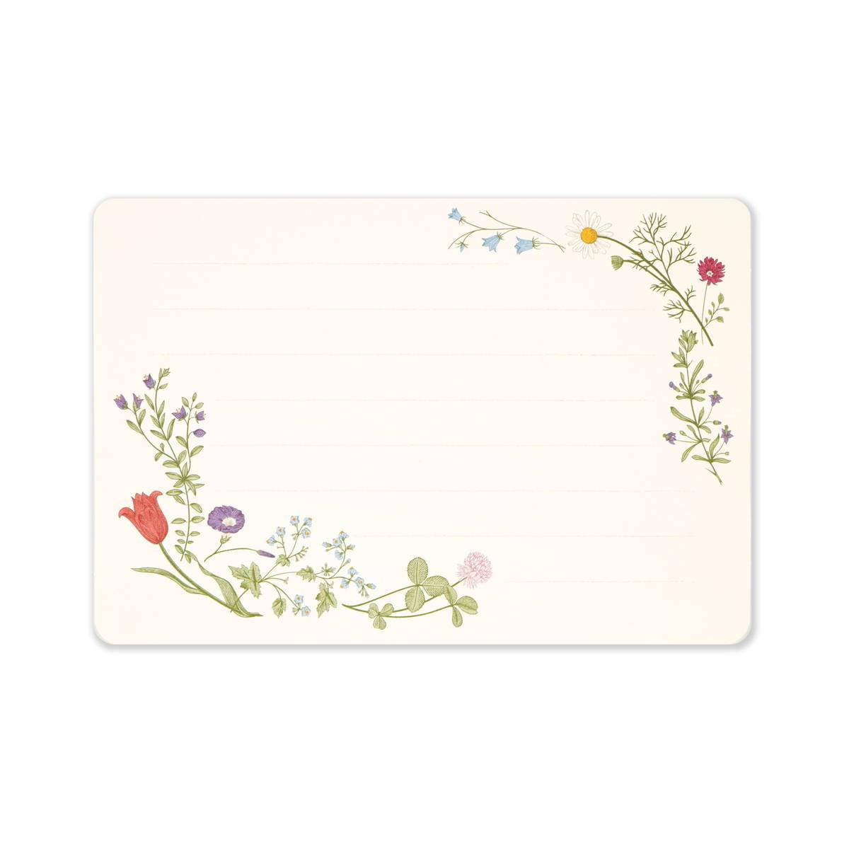 ミニレターセット 春の息吹|mls-128