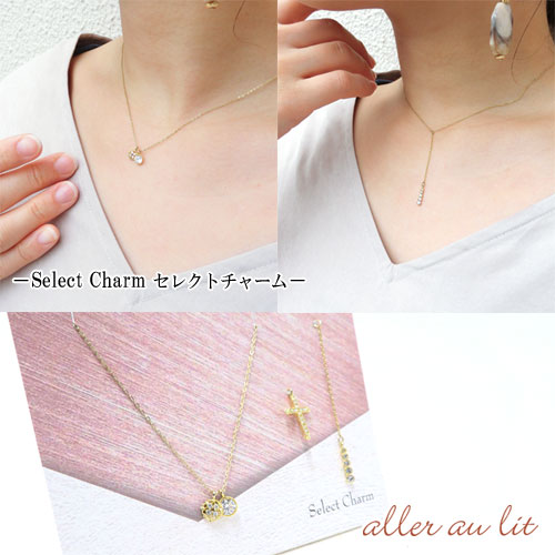 Gift Necklaceシリーズ-Select Charm-ネックレス&チャーム4個セット【アレオリ】