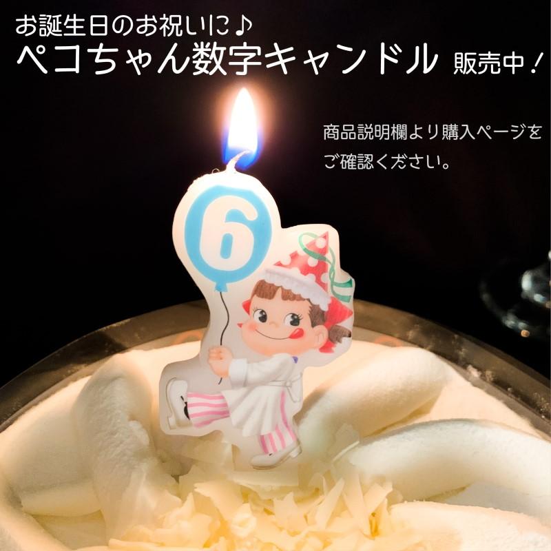 【送料無料】糖質オフ ホワイトチョコ生ケーキ