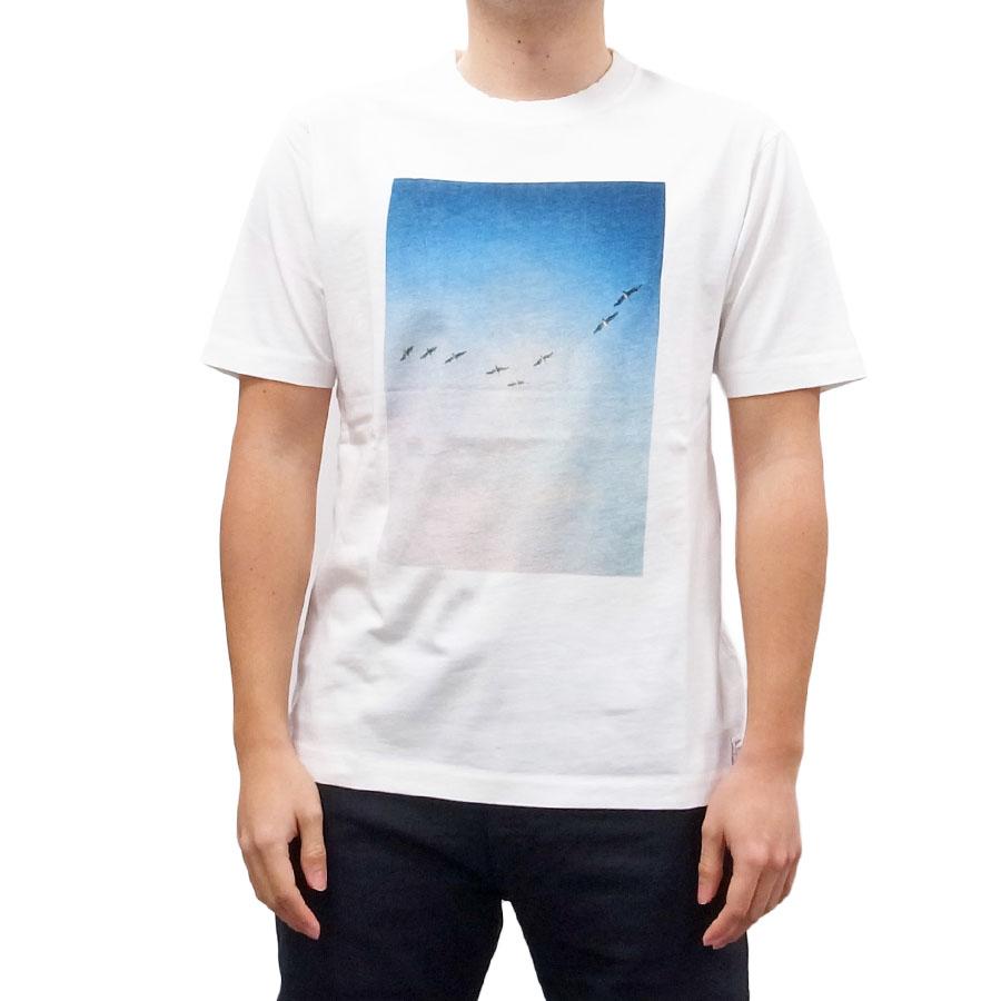 BANKS バンクス メンズ レディース ユニセックス 半袖Tシャツ カットソー オーガニックコットン ZAK BUSH BIRDS ホワイト 白