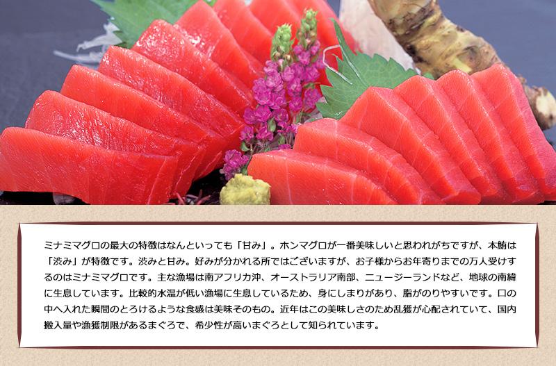 ビンゴ 景品 目録 景品 パネル グルメギフトパネル付き目録 焼津船元直送の天然南マグロの目録 送料無料 M-1