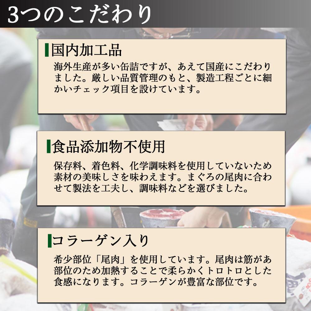 缶詰 魚 ツナ 高級 非常食 おつまみ おかず 詰め合わせ セット 保存食 長期保存 内祝 送料無料 ガーリックツナ 5缶入り 86201