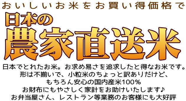農家直送米 白米 10kg 国内産100%