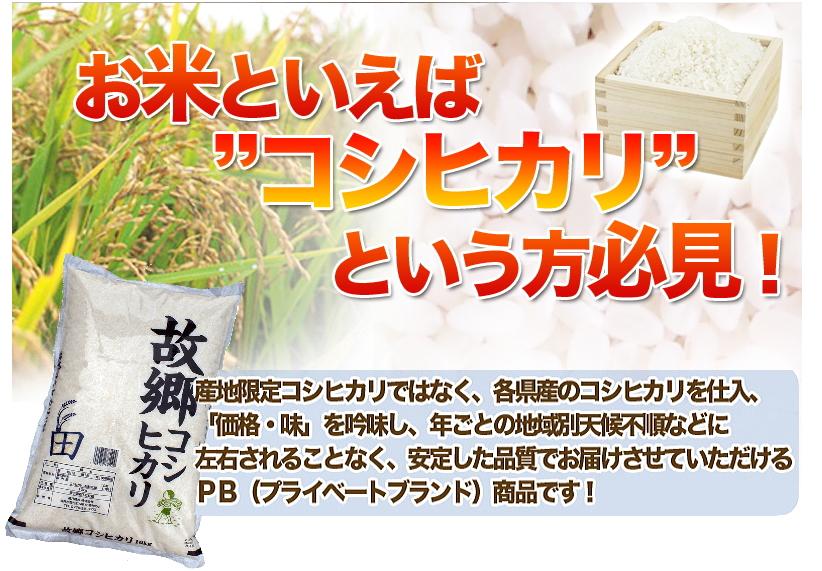 故郷コシヒカリ 白米 20kg(10kg×2) 国内産