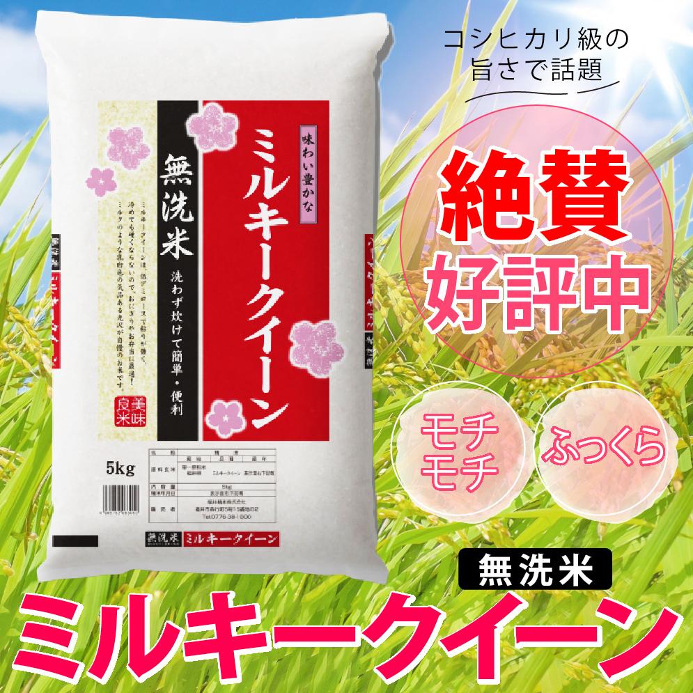 ミルキークィーン 無洗米 5kg 福井県産