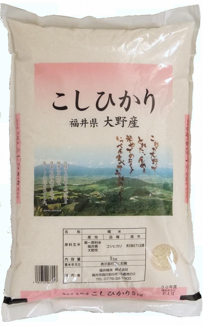 数量限定 送料無料 大野コシヒカリ 白米 10kg 福井県大野産