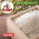 数量限定 送料無料 大野コシヒカリ 白米 20kg 福井県大野産