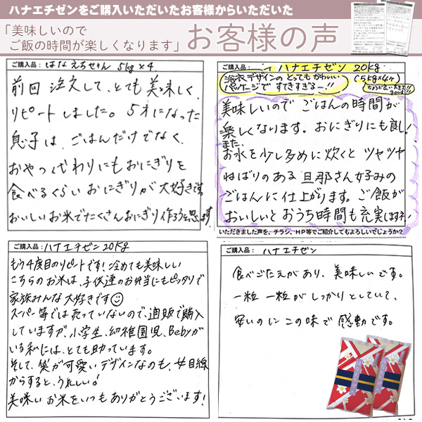 【定期購入】ハナエチゼン 白米 10kg(5kg×2) 福井県産