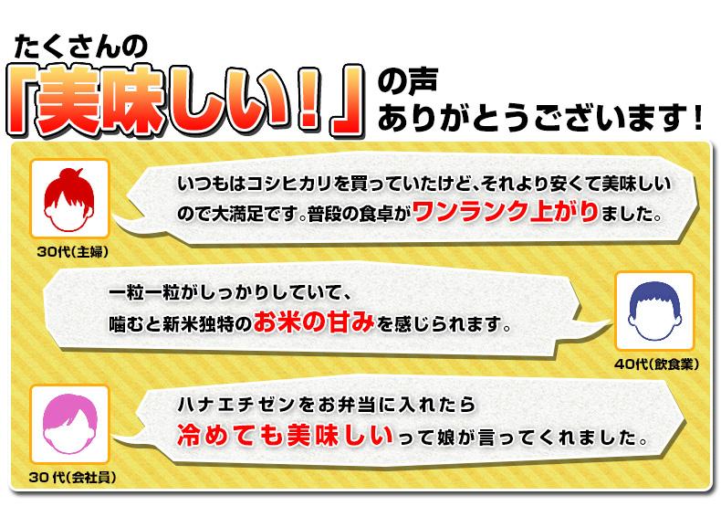 【定期購入】ハナエチゼン 白米 20kg(5kg×4) 福井県産