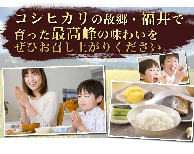 福井県産コシヒカリ 無洗米 10kg(5kg×2)
