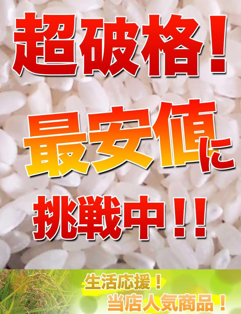 ひかり精米 白米 20kg(10kg×2) 国内産100% 生活応援米