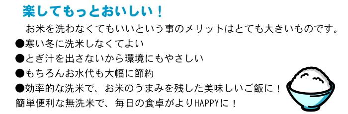 【定期購入】福井県産コシヒカリ 無洗米 20kg(5kg×4)