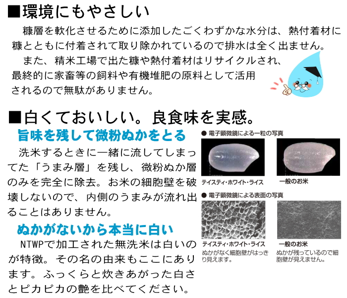お試しサイズ コシヒカリ 無洗米 1kg 福井県産