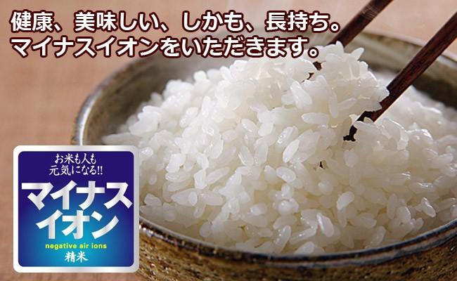 【定期購入】農家直送米 白米 10kg 国内産100%