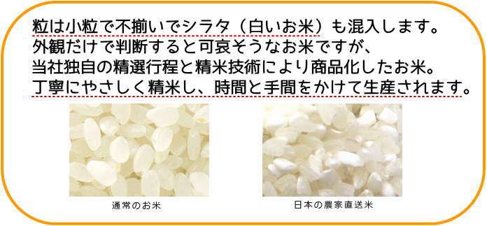 【定期購入】農家直送米 白米 20kg(10kg×2) 国内産100%