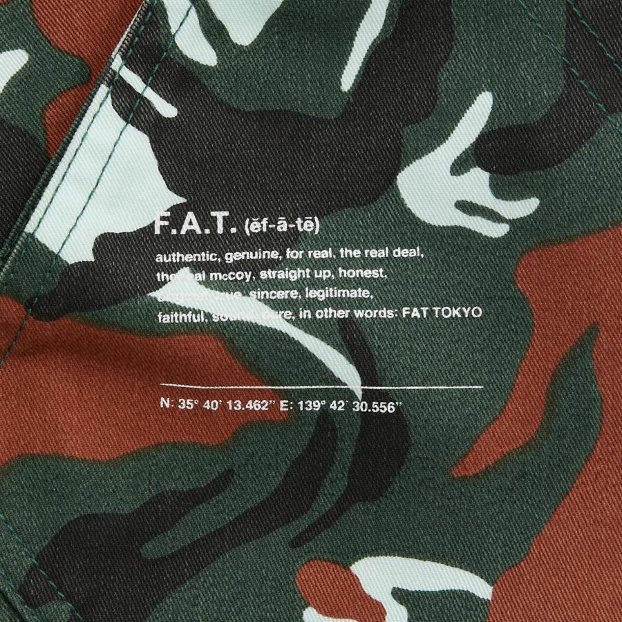 FAT : ASHAULTS