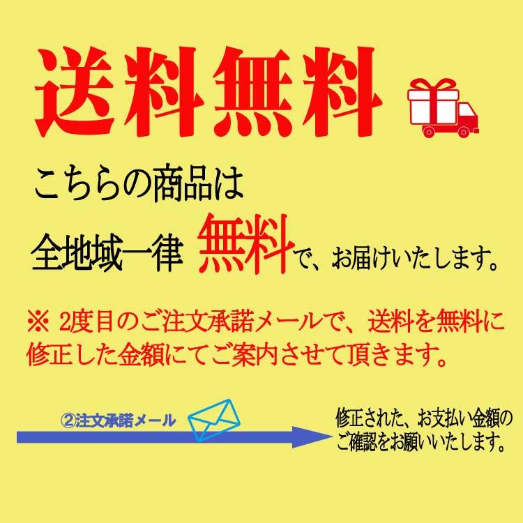 マスク 日本製 N95規格フィルター 立体型 布製マスク リビングガード アンチウイルスマスク 洗える 通気孔バルブ無し GSIクレオス