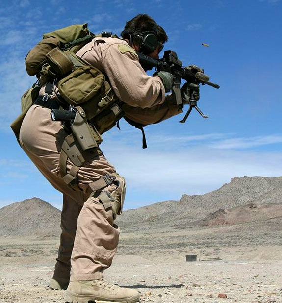 MOLLE WEAPON CATCH CB