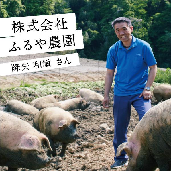 【6/16(水)まで限定受注】【送料無料】<br>Cool Agri 6月の逸品農産物 ジャージー牛乳&放牧豚のウインナー3種 詰合せセット