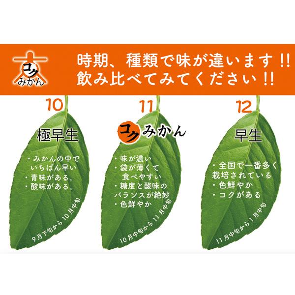 【送料無料】山川みかん ストレートジュース 飲み比べセット 180ml×6本