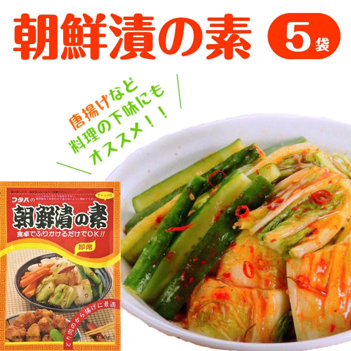 朝鮮漬の素 5袋 【送料無料】