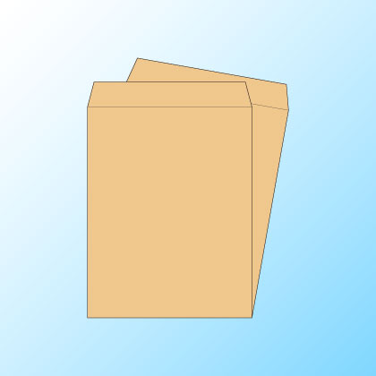 角3クラフト85/2色印刷【黒+DIC指定色】/〒枠なし/2000枚