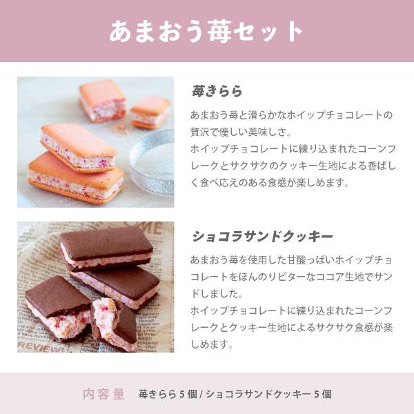 選べるクッキー食べ比べセット お試しシリーズ 10個入 メール便発送 送料無料 mailbin