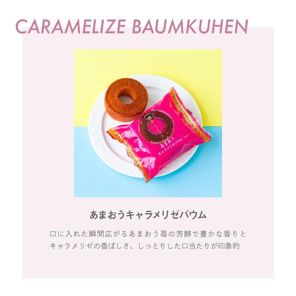 バウムクーヘンギフトセット 内祝 御祝 焼き菓子 詰合せ スイーツ 贈答用 あす楽対応 送料無料 宅急便発送 Agift