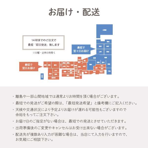 4種のクッキー TOKYO BakedBaseギフトセットS|SAND COOKIE LANGUE DE CHAT 焼き菓子 詰め合わせ スイーツ 内祝 贈答用 即日発送対応 送料無料 宅急便発送
