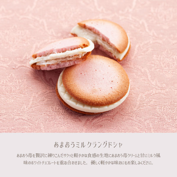 博多ミノリカお試しセット 通販限定のお試しお菓子セット 4種類が入った「あまおう苺」を使ったこだわりの洋菓子 メール便発送 送料無料 mailbin